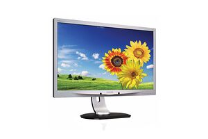 Philips 220P4LPYES
