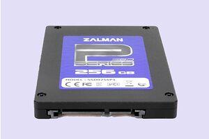 Zalman SSD0256P1