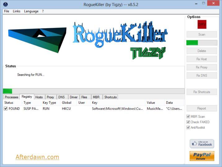 roguekiller license key