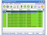 JDownloader (portable) v0.9.580