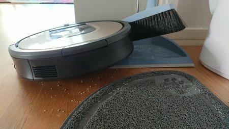 Roomba ja rikkalapio