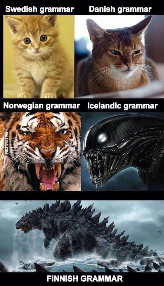 Finnish Grammar meme