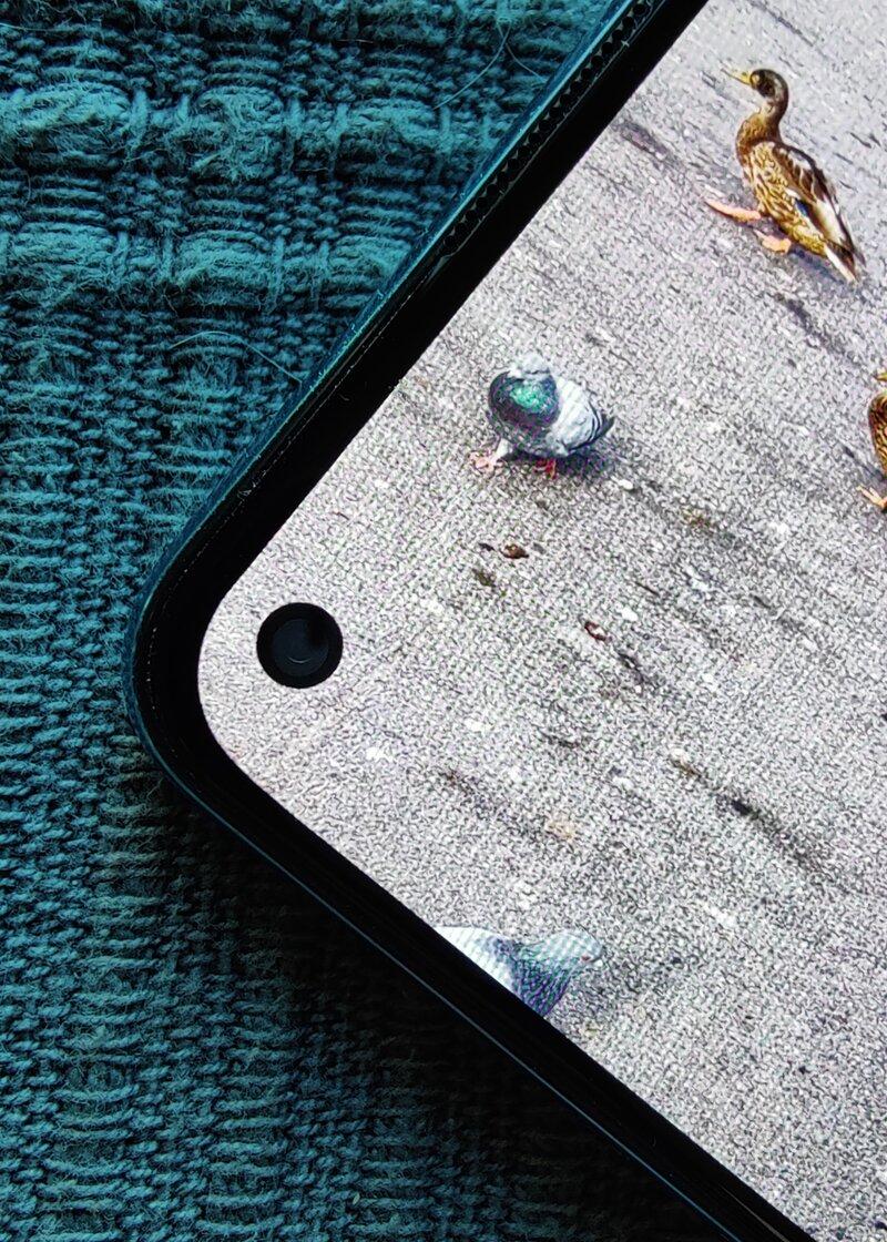 OnePlus Nord 2 etukameran kolo