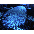 Fingerprint by flickr CPOA.jpg