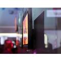 LG OLED panel.png
