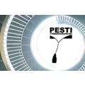 Vierailtua: PESTI 2012 - tekniikan alan työmarkkinapäivät