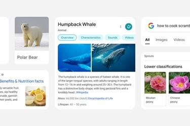 Googlen mobiilihaku uudistuu ulkoasun ja käytettävyyden osalta