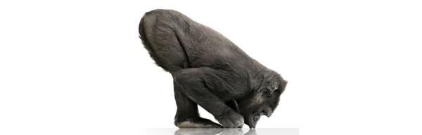 Corning päivittää suositun Gorilla-lasin entistä kestävämmäksi
