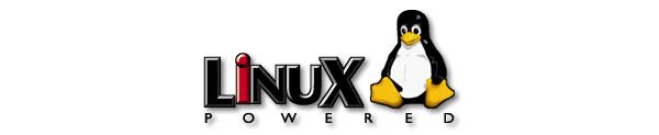 Google joutui vastuuseen Linuxin käytöstä