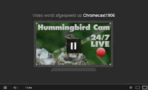 Nu ook privé- en live-video's Youtube met Chromecast