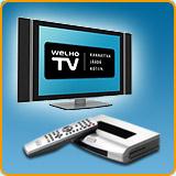 IPTV:n tilaajamäärät kaksinkertaistuivat vuonna 2007