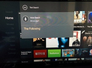 Amazon Fire TV to add Netflix to universal voice search later this year