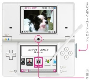 DSi sales in Japan top 500,000 for the month