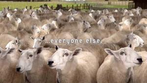 Samsung subtly calls Apple fans 'sheep'