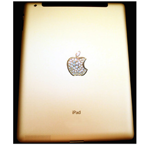 It's finally here, the $8.2 million iPad with dinosaur fossil