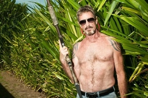 Antivirus pioneer John McAfee to run for president