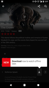 Netflix added offline viewing finally to PCs