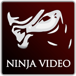 NinjaVideo admins plead guilty and face jailtime