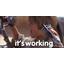 Imgur haluaa korvata GIF-tiedostot