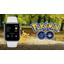 Pokemon Go tuki loppuu Apple Watchilla