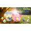 Pokemon Go -pelaajat tarkkana – Uusi tapahtuman käynnistyy aivan pian