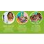 Aito Sims saapuu älypuhelimiin, sekä iOS:lle että Androidille