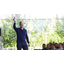 Applen toimitusjohtaja kiistää verokikkailut
