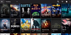 Terrarium TV piracy app shutting down