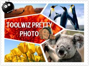 Met de gratis ToolWiz Pretty Photo schitterende foto's en collages maken.