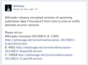 Wikileaks releases 400GB encrypted file as 'insurance'