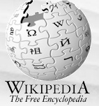 Google founder donates $500,000 to Wikipedia