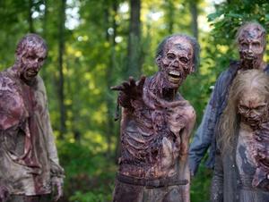 Mitvit..? Amazonin käyttöehdoissa rajoitus, joka kattaa zombie-maailmanlopun!